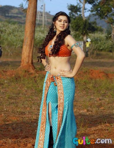 hot hansika - This is a picture of hansika motwani the hot tamil actress.