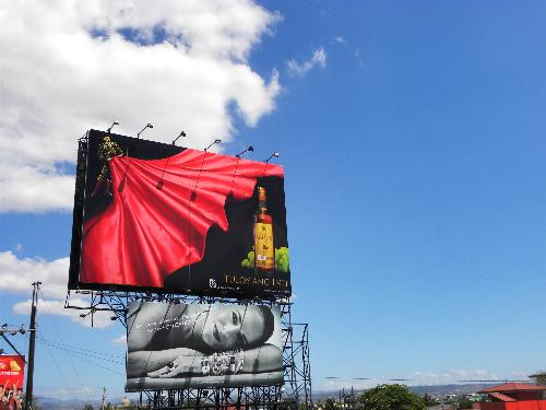 Billboard - One of hundreds of billboards seen in the Philippines. Messes up the sky and the scenery.