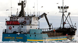 Cornelia Marie - The Cornelia Marie the fishing boat which is part owned by Jake and Josh Harris.