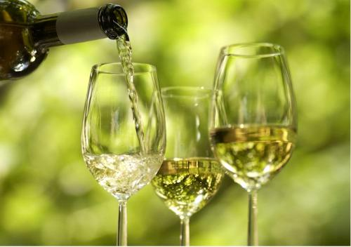 wines for us...everyone is free to join...but not  - wines for us...everyone is free to join...but not pretenders