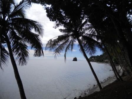 ambon beach - this is the view of ambon beach. so nature. very interestingly. it's just 1 hour from city center of ambon.