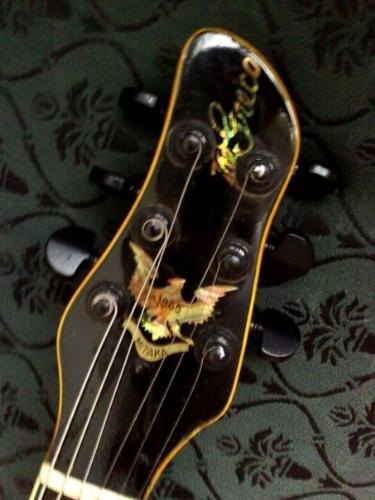 guitar neck - A guitar fretboard