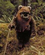 Ewok - An Ewok from Return of the Jedi.