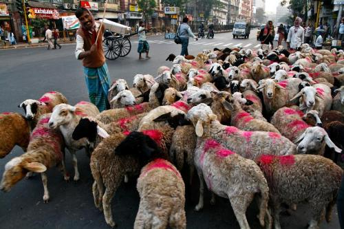 traffic control - traffic control..... incredible india