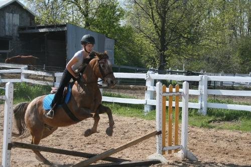Santana and Olivia - Santana is a Appy cross. His rider and leaser is Olivia.