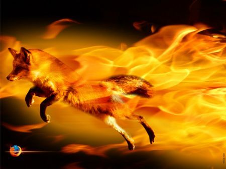 Firefox - The fire fox from firefox caught in action!