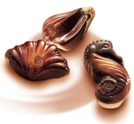 Gulyian Chocolate Seashells - Absolutely gorgeous they iz! :D