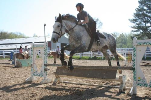 Emily and Ballareene - Emily is jumping her 5 yr old American Warmblood Ballareene. Balle sometimes takes alot to get motivated!