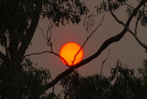 Red Sun - This is a Photo I took of the Sun when we had the distructive victorian fires in Feb 2009