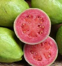 Guava from me - Fruits