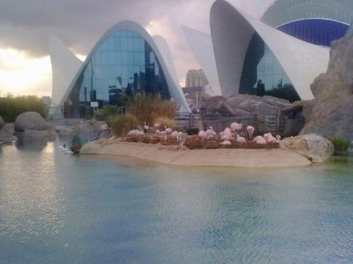 Valencia-Spain - Photo of Valencia