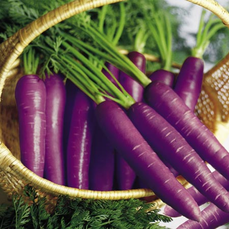 purple carrots - can you try to eat one? :)
