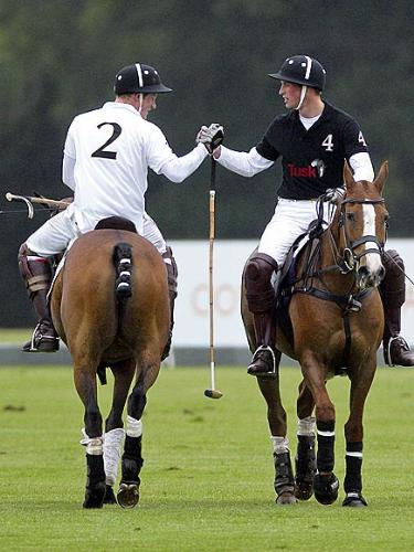 Good Game - The brothers Prine Harry and Prince William showing good sportmanship after a match.