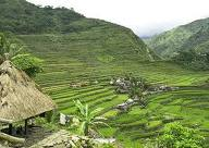 Banaue Rice Terraces - beautiful places in the Philippines! Mabuhay!