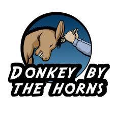 donkey with horns? - donkey
