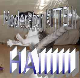 Warning: warrior kitten detected - this is what happens if admin and army of moderators sees you're topic w/violation