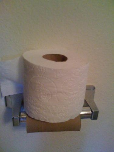 That is so lazy! - A rant: I can't stand people who can't change the toilet paper roll!