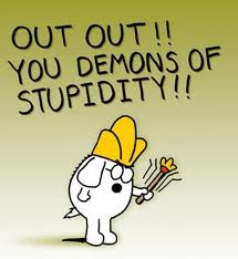stupid things that I do - surrounded by stupidity