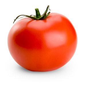 I love tomato! - tomato example picture