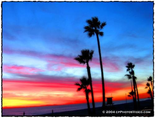 Life - Sunset