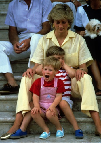 Diana and her sons - Her is Diana with Harry and William when they were pretty little! Cute boys they were!