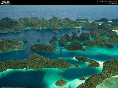 The beauty of Raja Ampat - WEST PAPUA ISLAND SORONG-RAJA AMPAT  the best destination dive in the world