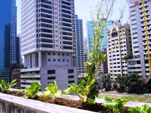 buildings - city buildings and parks