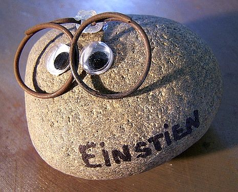 pet rock - pet rock Einstien