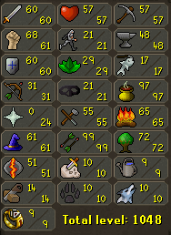 runescape - this picture is a picture of my runescape stats