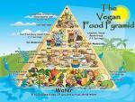 the vegan food pyramid - try vegetarian