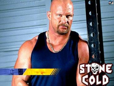 wwe - wwe superstar stone cold steve austin