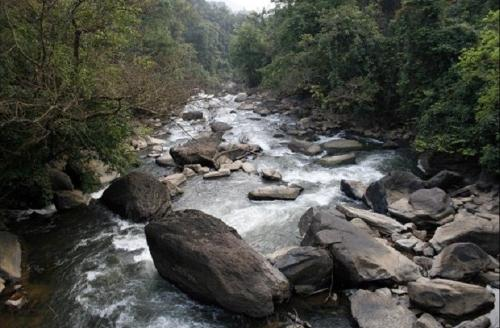 River Kumaradhara - Takes its birth at Western Ghats and flows down , later merges with Netravati river and joins the Arabian sea at Mangalore..