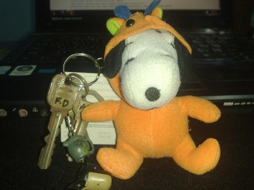 my lost peanut baby with our house keys  - my lost peanut baby with our house keys my lost peanut baby with our house keys