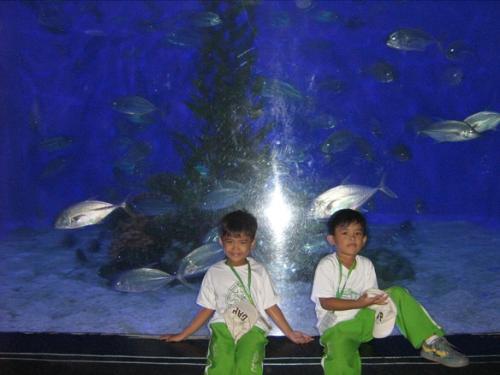 Ocean Park - Ocean Park in Manila