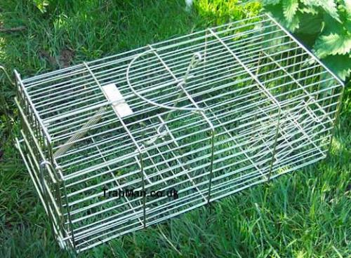 rat trap - rat trap can catch rats, once in they can't come out
