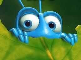 The BUG - bug
