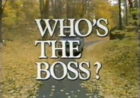 Who's the Boss - It starred Tony Danza, Judith Light and Alyssa Milano. I remember watching it when it was on.