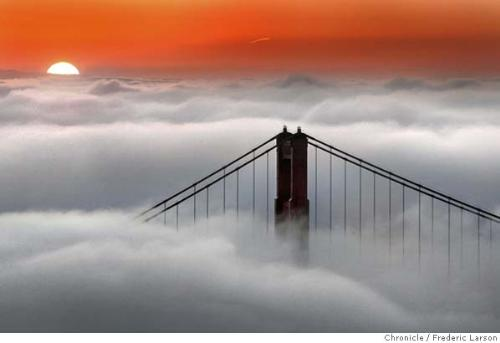 gogs - see the how fogs in usa