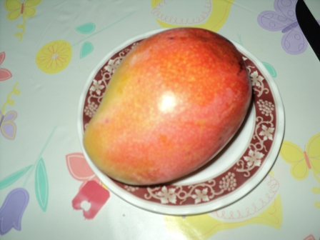 Sweet Mango - Ripe and sweet mango for me