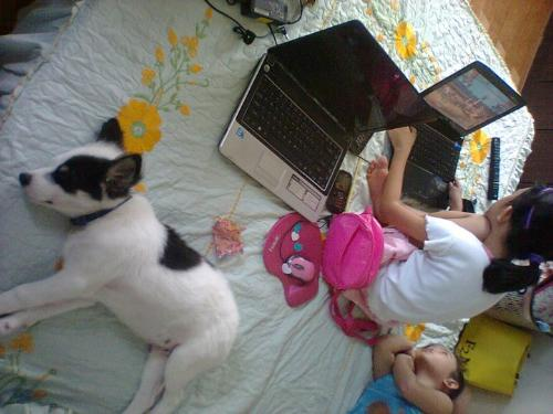 My Sachi - Sachi sleeping on the bed with baby lou and lyca..