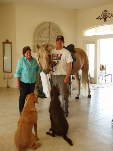 In the house! - The horse is Ivory Pal,a Tennessee Walker with his owners and his best buds,the 2 dogs. Well trained horse!