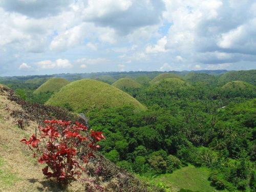 Chocolate Hills - Bohol's pride