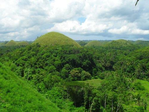 Chocolate HIlls in Bohol - Bohol Experience