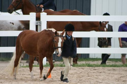 Emma and Candy - Emma and Candy doing Showmanship at horse show. No matter what,Emma loves her Candy!