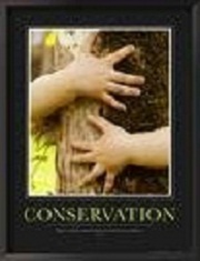 conservation - Let us try and conserve our nature.  Trees are our lifeline. They have the right to live and protecting them is our duty