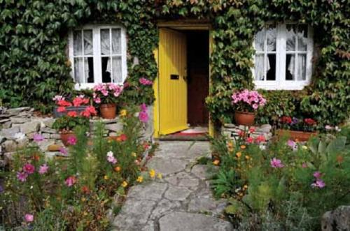 A lovely cottage - Picture perfect cottage and the lovely garden..