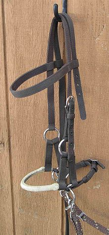 Side Pull Bridle - it is a bitless bridle. Instead of pulling the nose of the horse you pull on the side of the horses face.
