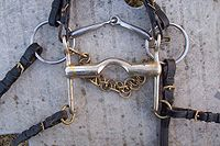 Double bridle - A double bridle has a curb bit and a bradoon (snaffle bit).