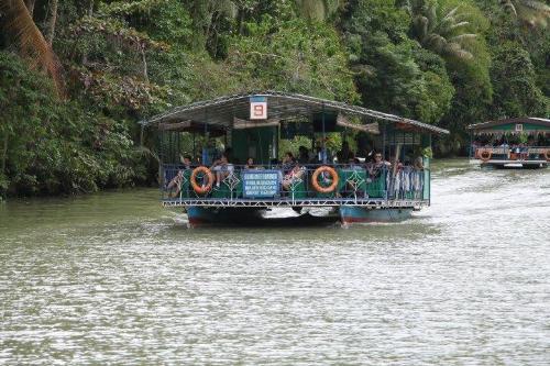 River Cruise - Laboc River, Bohol