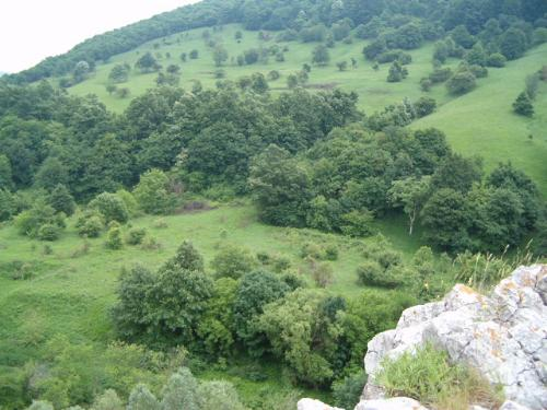 Cheile Nerei - Romania - Nice landscape in Cheile Nerei